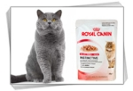 Консервы Royal Canin для кошек
